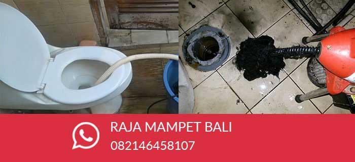 Jasa Wc Mampet Bali